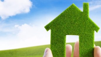 Osoba drži zelenu kućicu